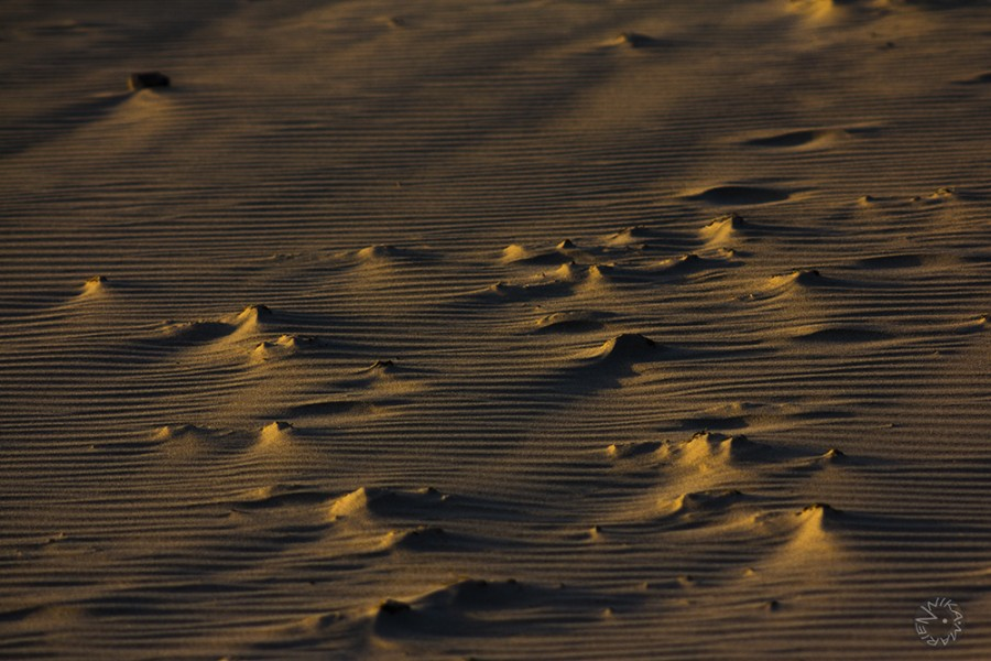 Effect of wind over sand