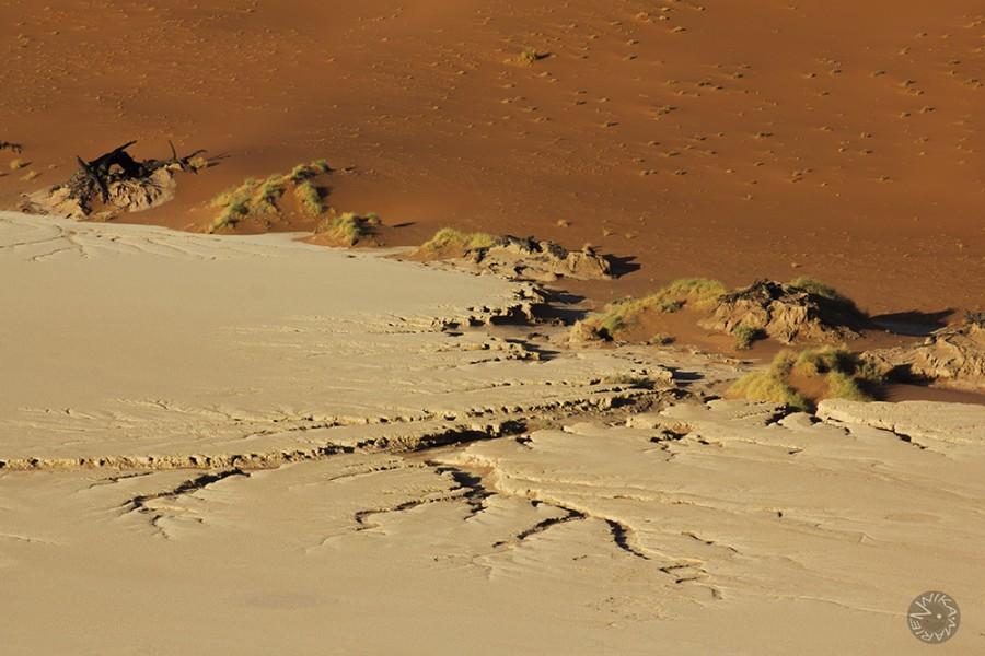 Namib desert, Namibia