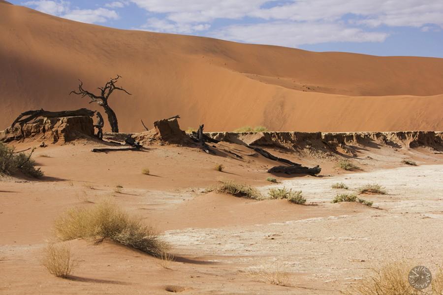 Namib desert Deadvlei, Namibia