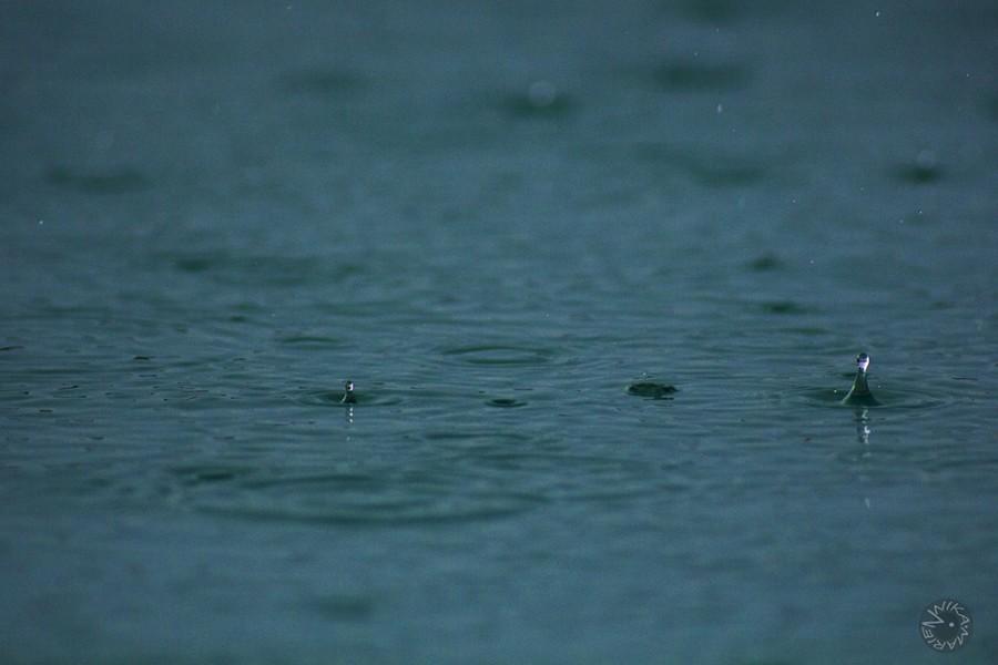 Rain drops, Africa